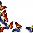Romanian flag butterflies, isolated on white background — Stock Photo #9693235