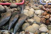 Busan, Fish Market — Stock Photo