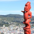 Victoria Peak Lookout, Wellington, NZ — Stock Photo