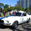 ������, ������: Vintage Ford Mustang Shelby Cobra GT 500
