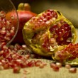 Pomegranate (Punica granatum) — Stock Photo
