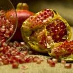 Pomegranate (Punica granatum) — Stock Photo