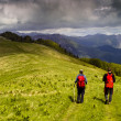 Two hikers on green meadow surrounded by high mountains — Stock Photo
