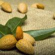 Stock Photo: Almonds on brown natural sheet