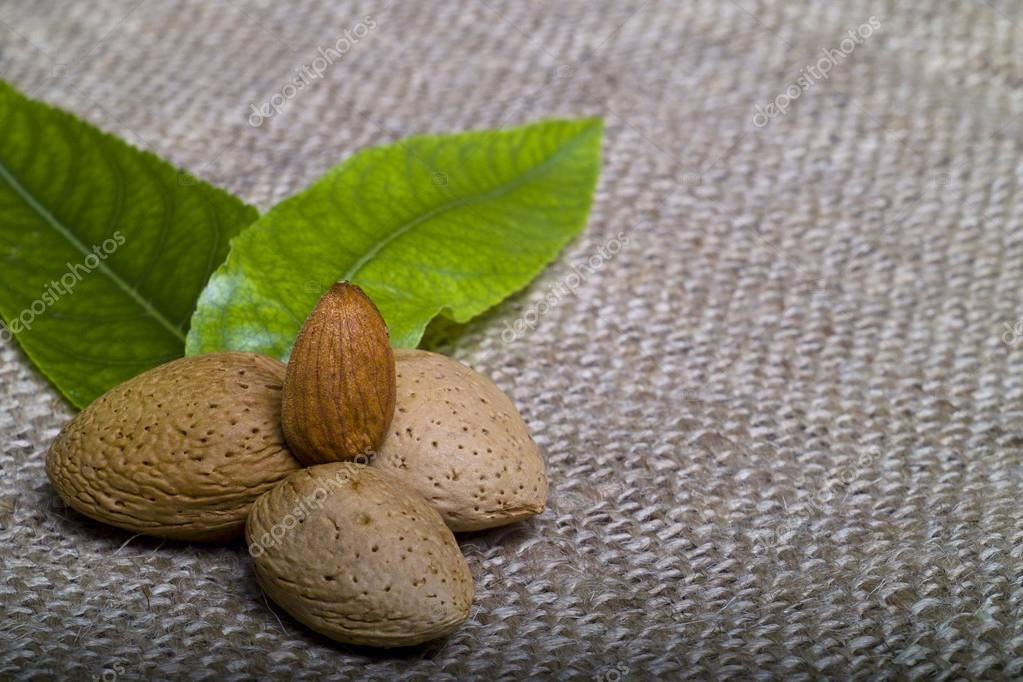 Almonds (kernel and leaves) on natural canvas — Stock Photo #14073349