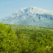 Mountain Dinara in Croatia — Stock Photo