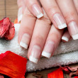Woman hands with beautiful french manicure — Stock Photo