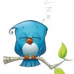 Tweeter Blue Bird Sleeping — Stock Photo