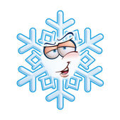 SnowFlake Emoticon - Hey You — Stock Vector