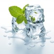 Stock Photo: Ice cubes with mint