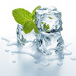 Ice cubes with mint — Stock Photo #29497081
