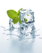 Ice cubes with mint — Stock Photo
