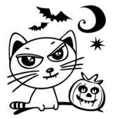 Halloween cat — Stock Photo