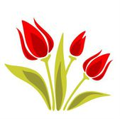 Ornate red tulips — Stock Photo
