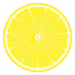 Large circle of lemon — Stock Vector
