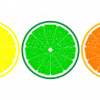 Orange, lemon, lime close up — Stock Vector