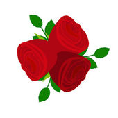 Three red roses — Stock Vector