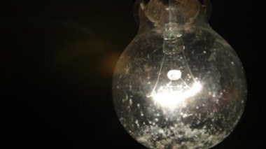 Bulb close up in a spray of dirt and insects flying — Stock Video