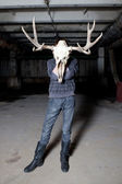 Man with a deer skull for a head in a dark basement — Stock Photo