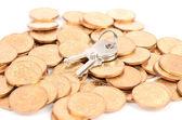 Monety i klucz — Zdjęcie stockowe