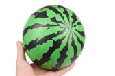 Watermelon ball — Stock Photo