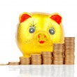 Piggy bank and coins — Stock Photo #13433806