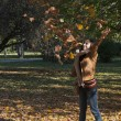 Young woman throwing autumn leaves — Stock Photo #13896832