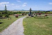 Garden path in slovak arboretum — Stock Photo