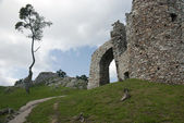 Ruin of castle Hrusov and lone tree — Stock Photo