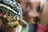 Turtle and woman — Stock Photo