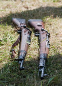 Two rifles in the grass — Stock Photo