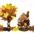 Stock Photo: House and tree made of autumn leaves, chestnuts, pine cones and