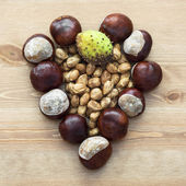 Autumn heart of horse-chestnuts and nuts — Stock Photo