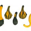 Stock Photo: Ornamental gourds isolated
