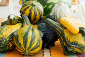 Ornamental gourds on the kitchen table — Stock Photo