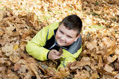 Little boy plays in autumn dry leaves — Stock Photo