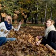 Two beautiful young women throwing yellow leaves — Stok Fotoğraf #34793549