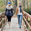 Two attractive young women posing on a wooden bridge — Stock Photo