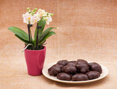 Orchid flower and gingerbread cookies — Stock fotografie