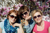 Three caucasian women posing with blooming magnolia — Stock Photo