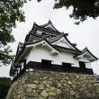 Frontal view of Hikone castle — Stock Photo