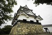Hikone castle inramade av blad — Stockfoto