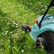 Lawn mowers — Stock Photo #19630639