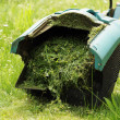 Lawn mowers — Foto Stock