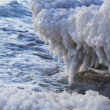 Stock Photo: Salt Shore