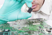 Verifying Microchip — Stock Photo
