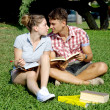 Happy couple in love studying with books in park — Foto Stock