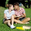 Happy couple in love studying with books in park — Stok fotoğraf