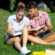 Stock Photo: Happy students with books in park