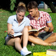 Happy students with books in park — Stock Photo